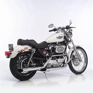 Harley Davidson Auspuff : silvertail auspuff harley davidson 883 1200 sportster ebay ~ Jslefanu.com Haus und Dekorationen