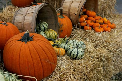 Abide With Me: welcome, october