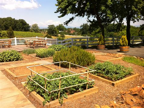 the kitchen garden the kitchen garden an ode to cooks and non cooks alike