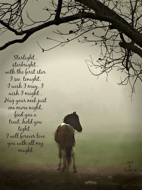 horse quotes loss poems horses losing star sympathy animal pet sayings dog teacher poem night pretty animals grief rainbow christian