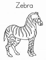 Zebra Coloring Pages Strong Stripes Realistic Zebras Printable Getcolorings Clipart Colornimbus Clipa sketch template