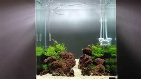 Nano Aquascaping by Nano Dennerle 60l Aquascaping Iwagumi