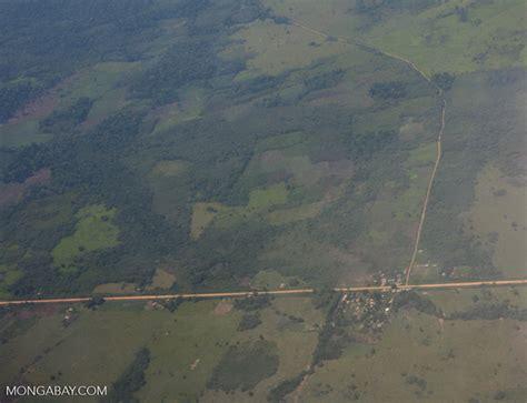 deforestation surrounding road   peruvian amazon