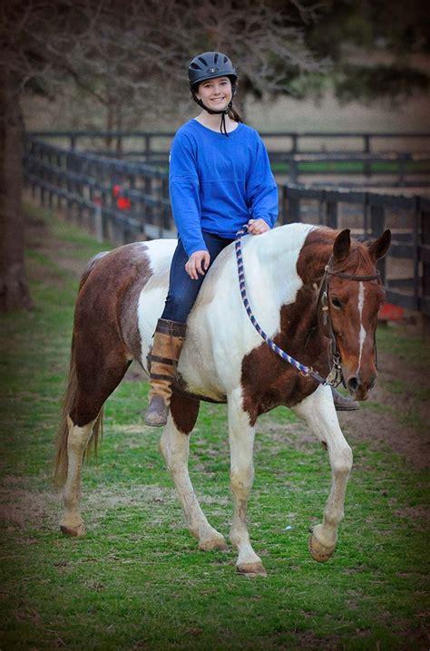 horse dolls paint doll girles ride horses rubride