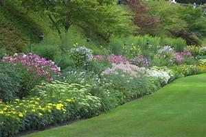 Welche Erde Für Hortensien : hang pflanzen pflegeleicht wohn design ~ Eleganceandgraceweddings.com Haus und Dekorationen
