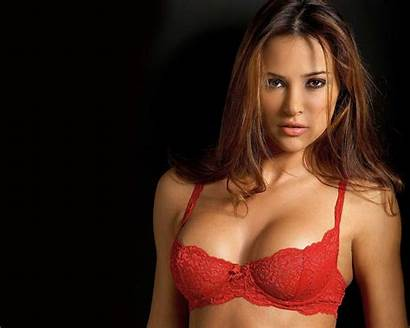 Wallpapers Woman Bra Super Models Lingerie Alina