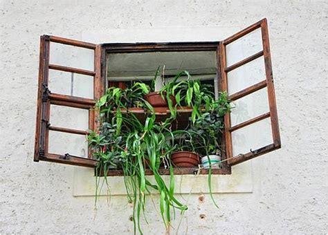 holzfenster nach außen öffnend erhalten und renovieren alter holzfenster