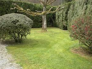 Tondre La Pelouse Sans Ramasser : tarif tonte pelouse tarif tonte pelouse tonte pelouse sur enperdresonlapin tarif pour tonte de ~ Melissatoandfro.com Idées de Décoration