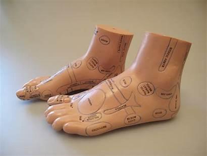 Foot Reflexology Pair Acumedic Mod Ref