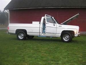 Buy Used 1979 Gmc Sierra 3  4 Ton 2wd Built 454 100  Rust