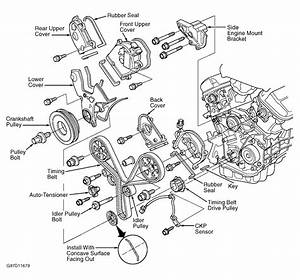 Honda Accord Serpentine Belt Routing Diagrams  Honda  Free Engine Image For User Manual Download