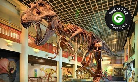 78519 Childrens Museum Philadelphia Coupon by Museum Membership Academy Of Sciences Groupon