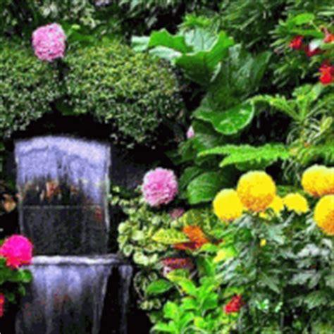 Photobucket Wallpapers Animation - nature hd gif images free impremedia net