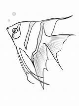 Angelfish Coloring Fish Angel Malvorlagen Sketch Mandala Dibujos Fische Printable Jahr Dieses Ausmalbilder Colorear Angelote Coloringsky Drus Peces Adult Sheets sketch template