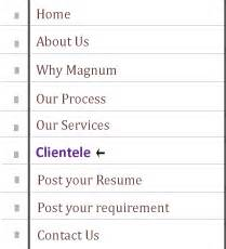 welcome to magnum consultants bangalore based