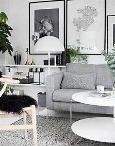 Tapis Blanc Et Gris : un salon en gris et blanc c 39 est chic voil 82 photos qui ~ Melissatoandfro.com Idées de Décoration