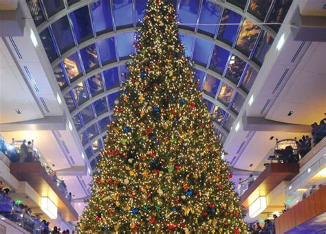 where to buy christmas trees in houston building the galleria s tree houstonia