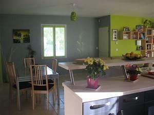 photos de mon salon vert anis et gris les nouvelles miss With idee deco cuisine avec cuisine gris et vert