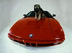 BMW M1 E26 specs & photos 1978, 1979, 1980, 1981