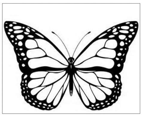 siti per colorare immagini immagini di farfalla da colorare