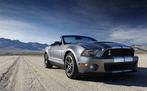 ford shelby mustang gt  wallpaper hd car wallpapers
