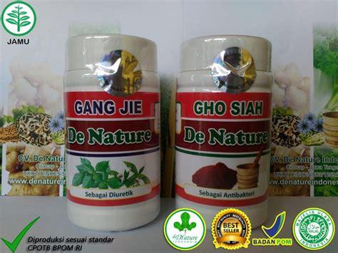 obat sipilis herbal de nature indonesia roketpro