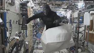 12news.com | WATCH: Monkey business in outer space ...