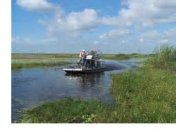 Air Boat Charleston Sc by What S New At Magnolia Plantation And Gardens Charleston Sc