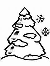 Tree Coloring Snow Pine Trees Winter Covered Drawing Pages Clip Clipart Snowy Season Easy Draw Cliparts Clipartmag Mangrove Printable Play sketch template