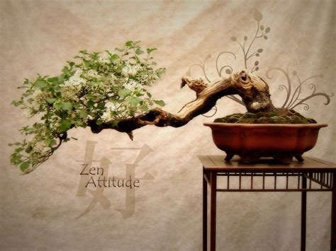 Fonds D Ecran Zen