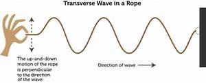 Diagram Of A Longitudinal Wave