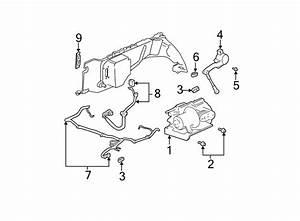 Oldsmobile Bravada Wire Harness  Gmc  W  Auto Level Control