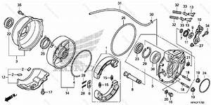 Honda Atv 2013 Oem Parts Diagram For Rear Brake    Panel