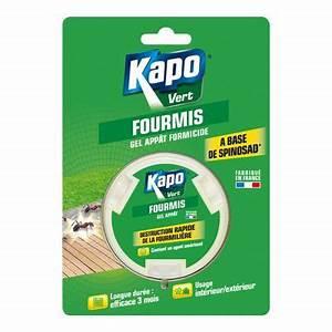 Anti Fourmi Naturel : gel app t anti fourmis naturel kapo 10g castorama ~ Carolinahurricanesstore.com Idées de Décoration