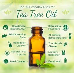 Uses For Tea Tree Oil Photos