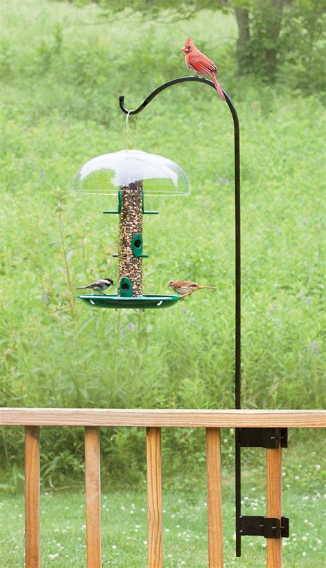 railing bird feeder hangers bird feeders pinterest