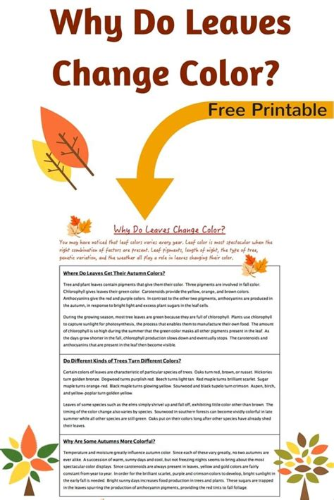 why do leaves change color in fall why do leaves change color printable science