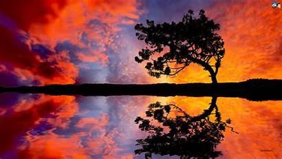 Sunset Pretty