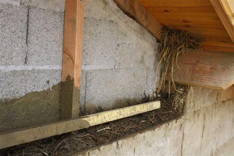 isolation mur parpaing interieur isolation naturelle