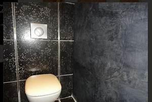 Deco Wc Gris : peinture chaux grise pour d co wc design ~ Melissatoandfro.com Idées de Décoration