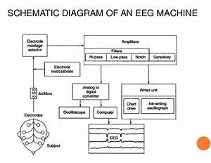 What Is An Eeg Machine  Definition  U0026 Faqs