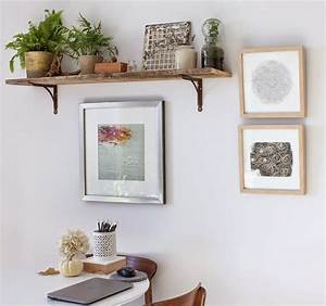 Ideas of Including Indoor Plant Shelves in Your Home's
