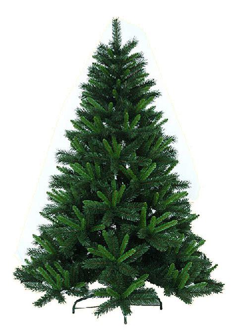 china light green common christmas tree china verdancy