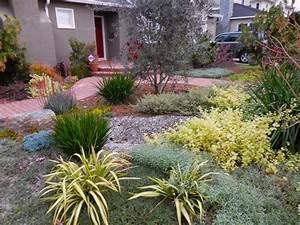 Pflanzen Pflegeleicht Garten : kiesbeet anlegen gestaltung eines mediterranen gartens ~ Lizthompson.info Haus und Dekorationen