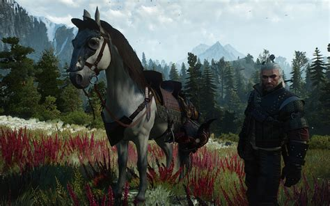 horse witcher mods equipment better witcher3