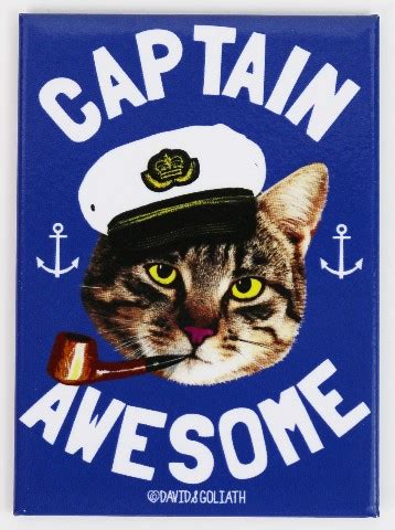 captain awesome fridge magnet cat humor funny