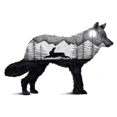wilderness scenes illustrated  striking animal