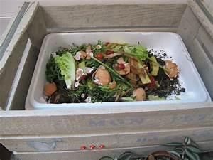 Compost En Appartement : fabriquer un composteur de balcon bricole et casserole ~ Melissatoandfro.com Idées de Décoration