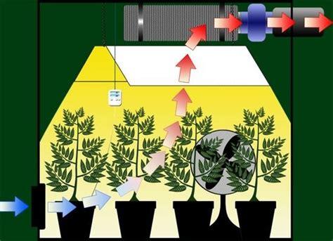 22 top tips to help cool your indoor garden go grow