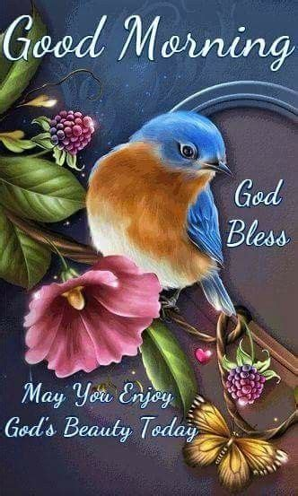 good morning god bless   enjoy gods beauty today pictures   images